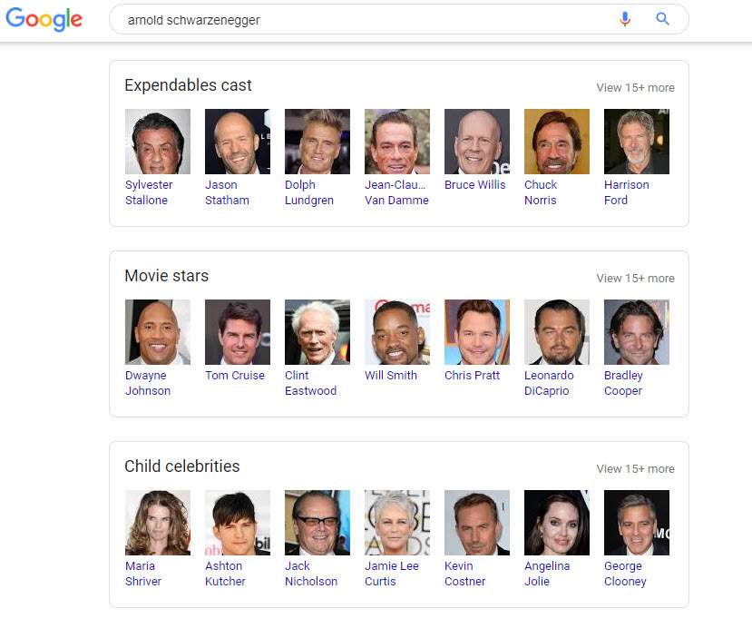 Schwarzenegger Related Search Boxes