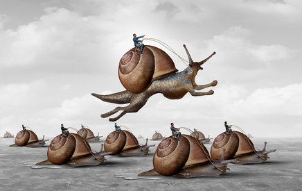 Jumping Snail Race