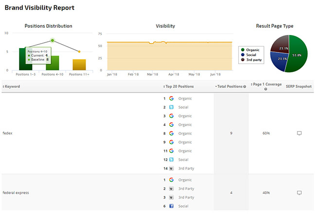 Brand Visibility Report