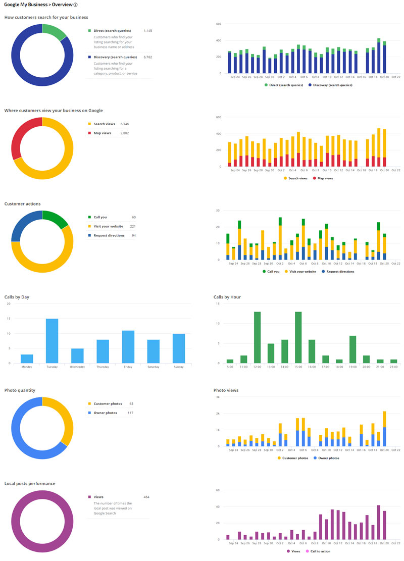 Google My Business Performance Reports